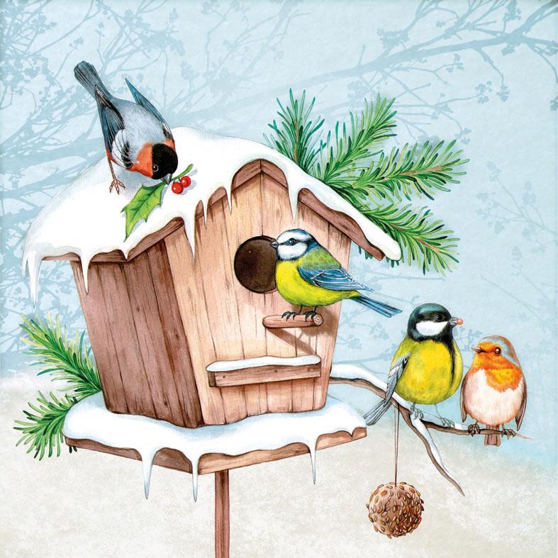 Картинка для детей птицы у кормушки